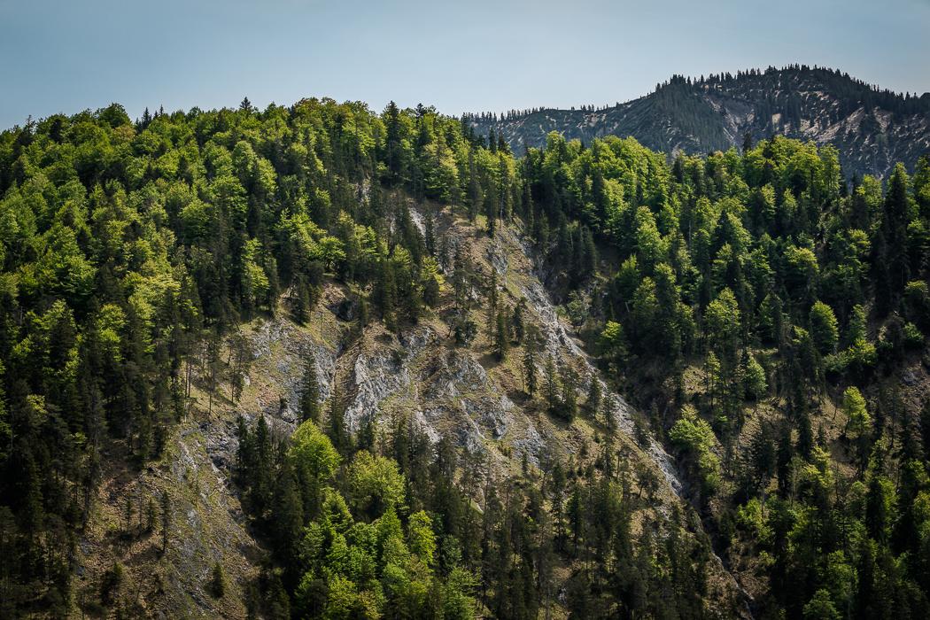 Sylvensteinspeicher Felswand Alpen