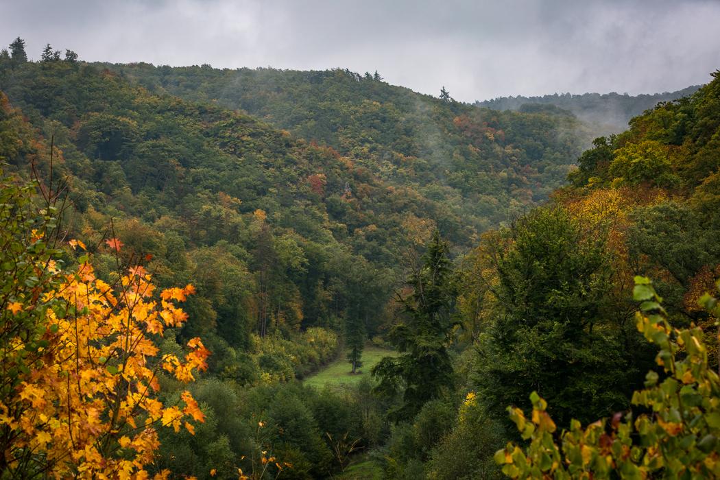 Burg Eltz Wanderweg Rheinland Pfalz Eltzer Wald