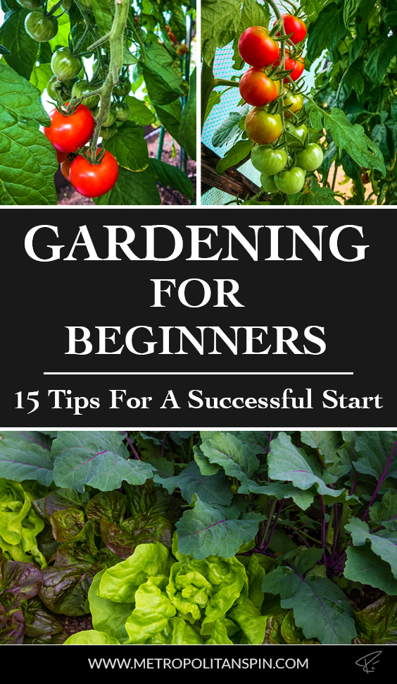 Gardening For Beginners Pinterest Cover